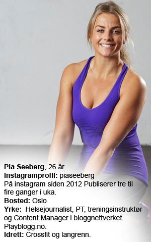 Pia-Seeberg-faktaboks